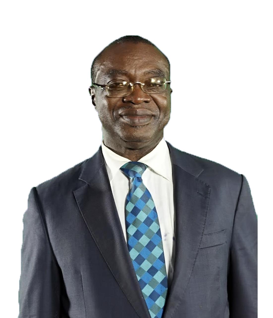 Mr. Chido B. Nwakanma